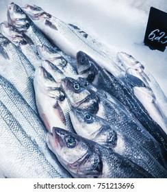 sea-bass at fish-market