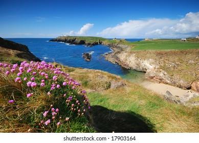 sea-coast of Ireland