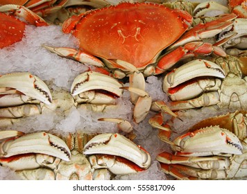 Seafood Crab on Ice