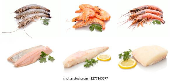 Seafood crustaceans and sea fishes white isolated