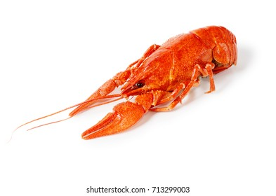 Seafood dish, Red boiled crayfish. Kind of Snacks for beer.