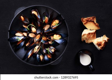 seafood, gourmet dinner, restaurant menu. boiled mussels in cast iron cooking dish with creamy sauce, cooked clams in shells