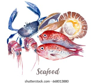 Seafood illustration. Hand drawn watercolor on white background.