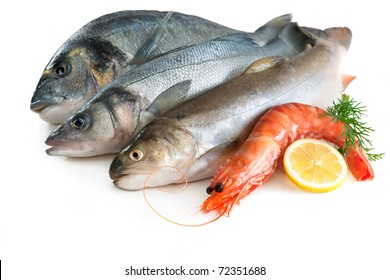 Seafood isolated on white backround
