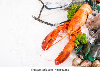 Seafood market fresh food sea with white background.