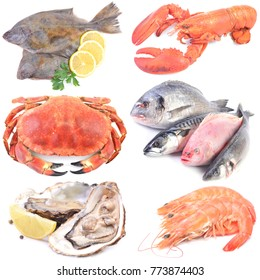 Seafood on a white background