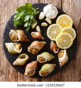 Seafood:  raw whelk, sea snails bulot with a garlic and parsley, lemon close-up on a table. top view from above
