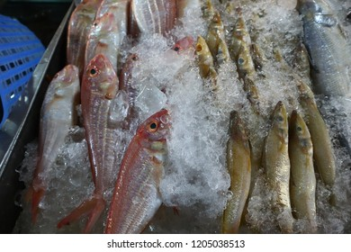Seafood sall in Thai market