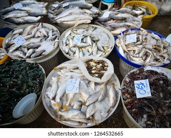 Seafood shop in Mahachai market. There are fresh fishes, crabs, shrimps, mussels and others.