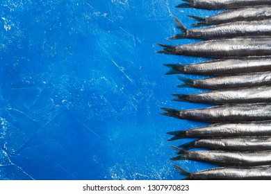 Seafood. Small sea fish, anchovies, sardines on the blue background. Fish pattern with copy space