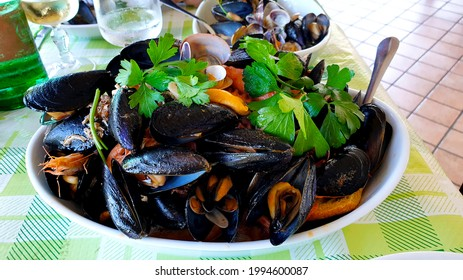 Seafood Soup Dish with Mussels