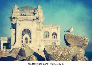 Seagul having Casino historical building of Constanta Romania in background using retro vintage filter