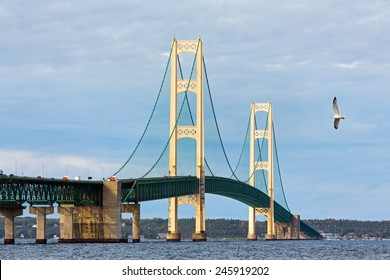A seagull flies near the Mackinac Bridge, a span connecting the Upper and Lower Peninsulas of the State of Michigan.
