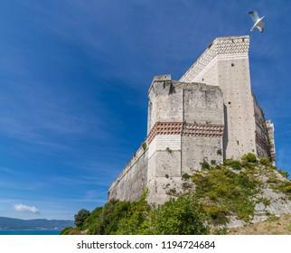 Seagull flies over the Castle of Lerici overlooking the sea, La Spezia, Liguria, Italy