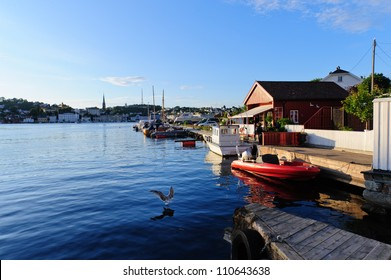 A seagull lands on water in this sunny evening picture in Arendal, Norway.