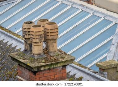 Seagull nesting in central Bristol.