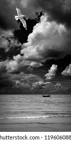 Seagull over the sea. Black and white art photo.