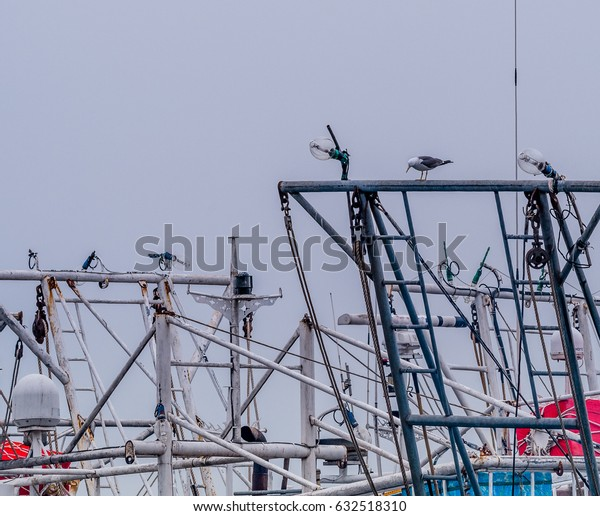 Seagull perched on metal crossbeam of a boat between two large navigation lights.