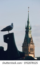 Seagull perching on a sculpture with Hamburg town hall spire in focus in the background. Binnenalster, Hamburg