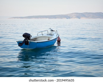 Seagull sitting on a small motorboat in the Adriatic Sea.