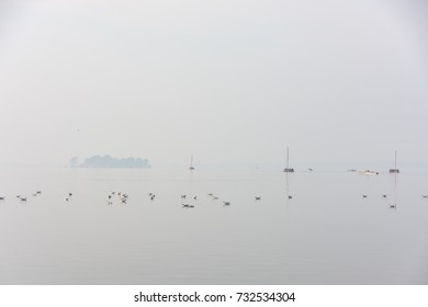 Seagulls and boats in special light mood with fog on Lake Steinhude, in the background the island of fortress Wilhelmstein
