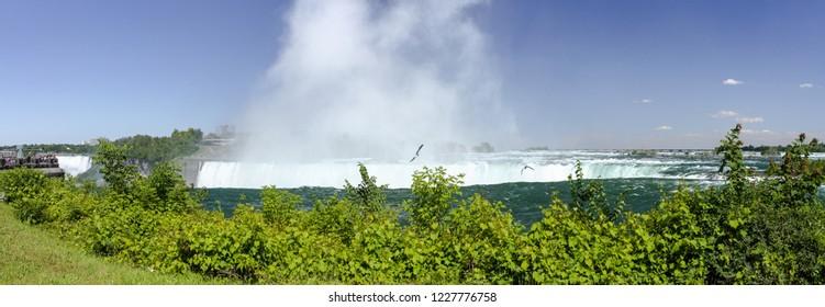 Seagulls flying over the Niagara Falls