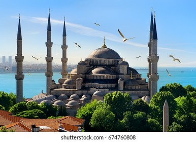 Seagulls over Blue Mosque and Bosphorus in Istanbul, Turkey.