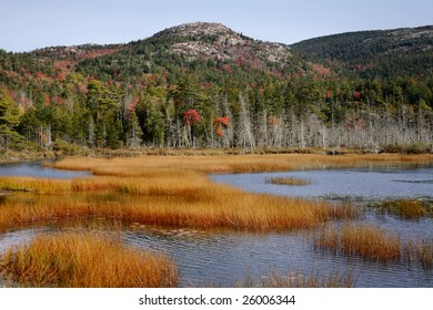 Seal Cove Pond, Mount Desert Island, Acadia National Park, Maine