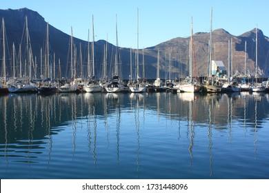 Seal harbor near Cape Town, SAR