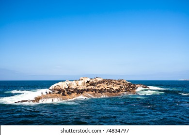 Seal Island in Mossel Bay viewed from a boat.
