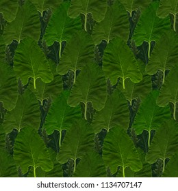 Seamless background from foliage. Can be used for posters, postcards for environmental events.