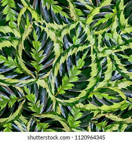 Seamless background with leaves of an exotic plant. Stylization: watercolor. Jungle.