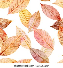A seamless background pattern of golden toned skeleton leaves on white background, autumnal repeat print