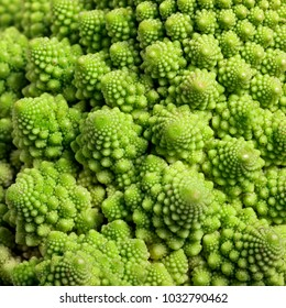 seamless background from Roman cauliflower