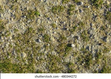Seamless balding grass texture background with a soft white chalk rock underneath.