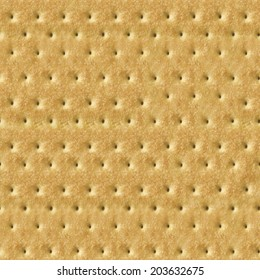 Seamless Detailed Salty Cracker Close-Up Texture