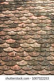 Seamless fish scales wood roof texture