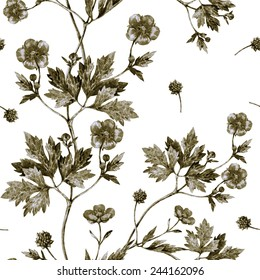 Seamless floral pattern with green wild flower on white background.