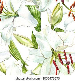 Seamless floral pattern. Watercolor white lilies, hand drawn botanical illustration of flowers.