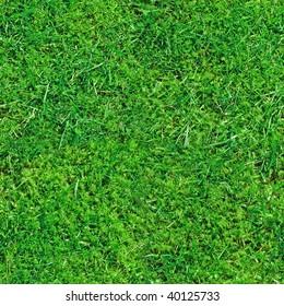 Seamless Grass Background Texture
