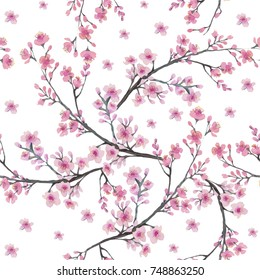 Seamless pattern with branch of  Cherry blossom flowers. Watercolor painting.