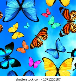 Seamless pattern with colored butterflies against the sky