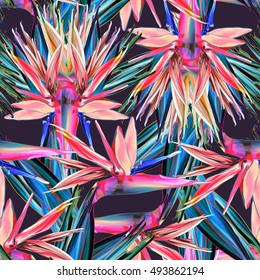 Seamless pattern with flowers, strelitzia. Summer tropical texture, color abstract background. Coloring