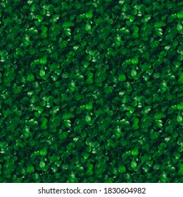 Seamless pattern green grass texture background. Starweed -winterweed, chickweed, satinflower, Stellaria media- plants. Good green leaves. Green background. Texture. Grass