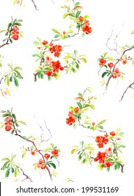 Seamless pattern isolated: Japanese quince blossoms