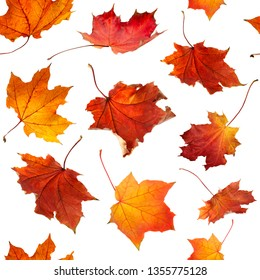 Seamless pattern of natural  autumn orange  leaves falling down Isolated on white background for print