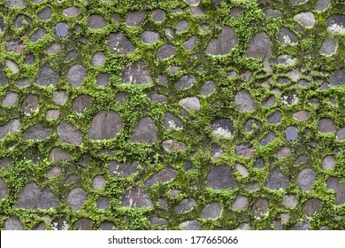 Seamless pavement stones and grass texture