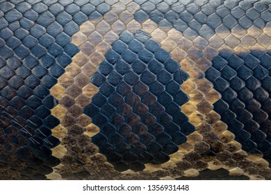 Seamless snakeskin pattern and textures. Snakeskin is used to make clothing such as vests, belts, boots or shoes or fashion accessories such as handbags and wallets.