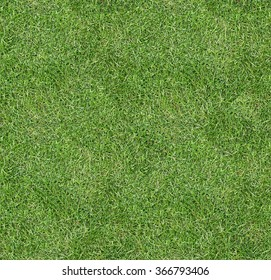 Seamless square green grass texture.