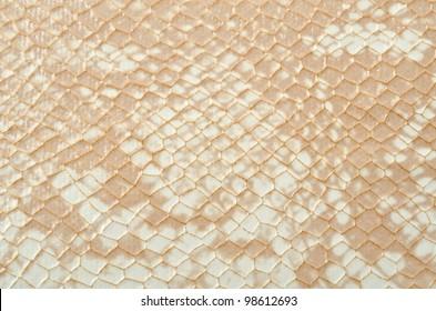 Seamless texture background white snake skin